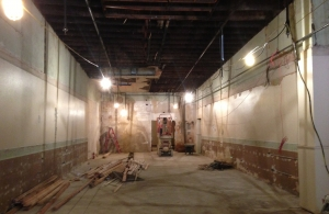 Dichotomy moves into construction phase